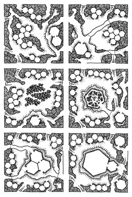 Geomorph-Set6