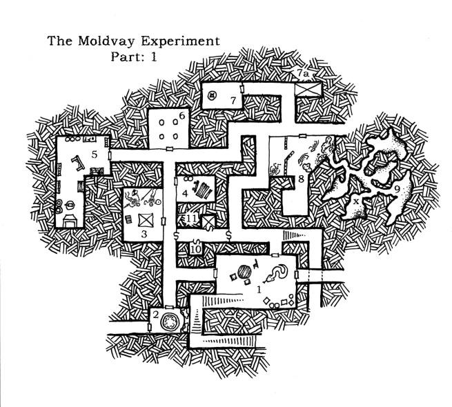 Moldvay Experiment-Final